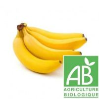 banane fournisseur