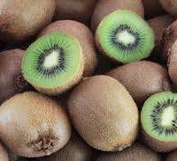 kiwi fournisseur
