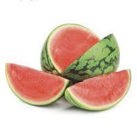mini melon fournisseur
