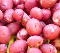 patate rouge