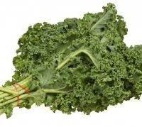 kale vert de la ferme