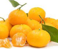 tangerine satsuma