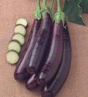 aubergine hansel